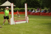 Picton flyball demo 2012
